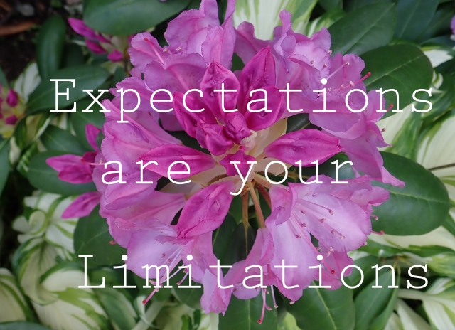 Expectations-are_edited-1.jpg